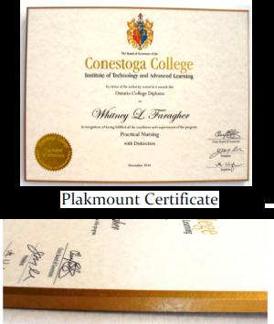 Graduation Diploma Framed on Plak It Mount