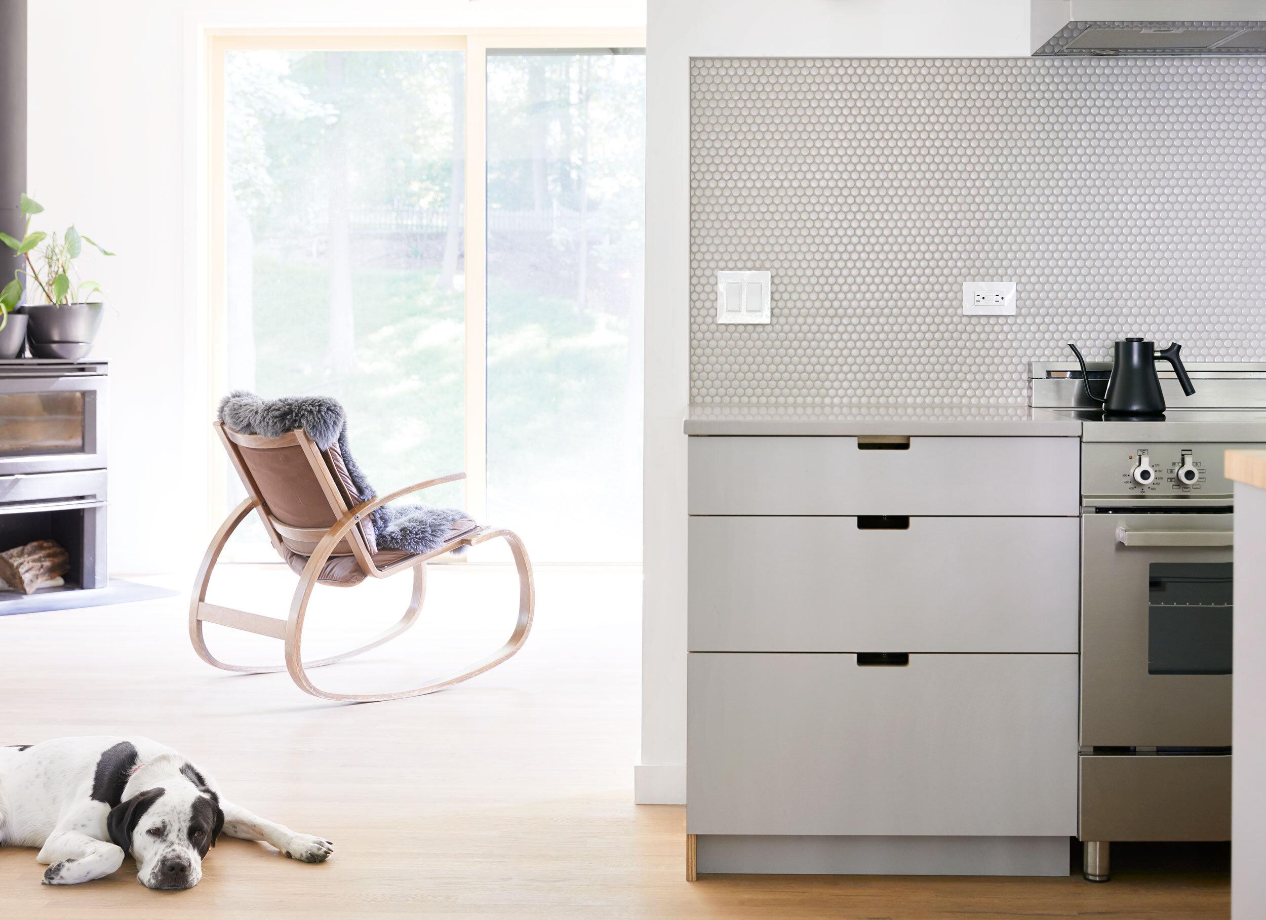 Grey-laminate-kitchen-with-puppy.jpg
