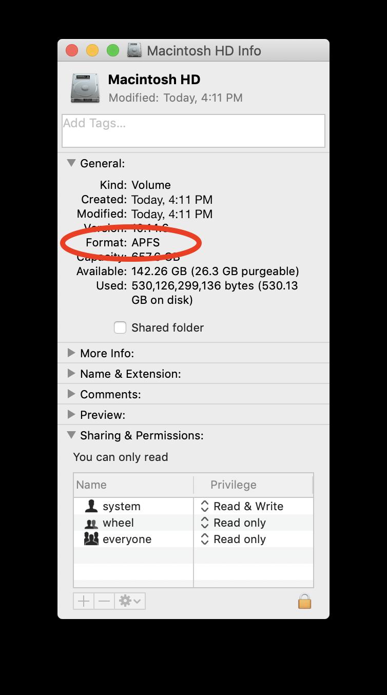 APFS Disk Get Info.png