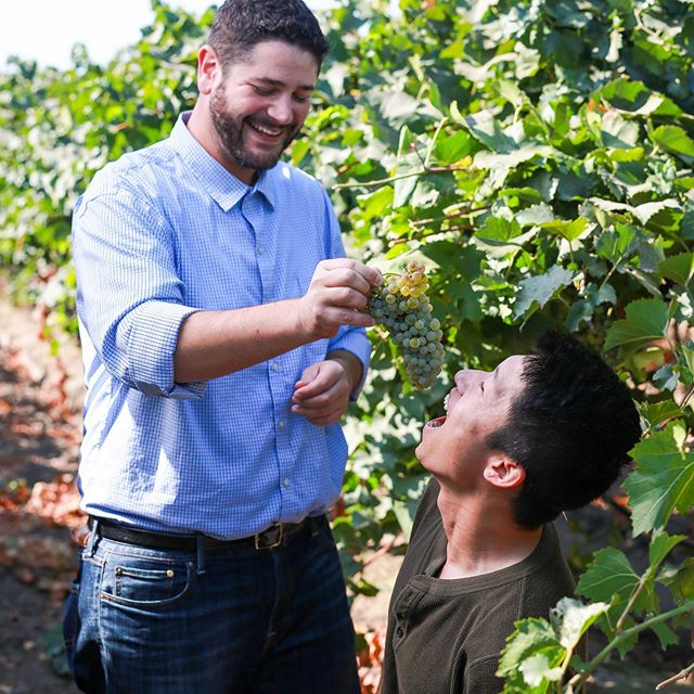 Harvest is VERY serious business in @lodi_wine Country. 📸@ilovegigglesphotography