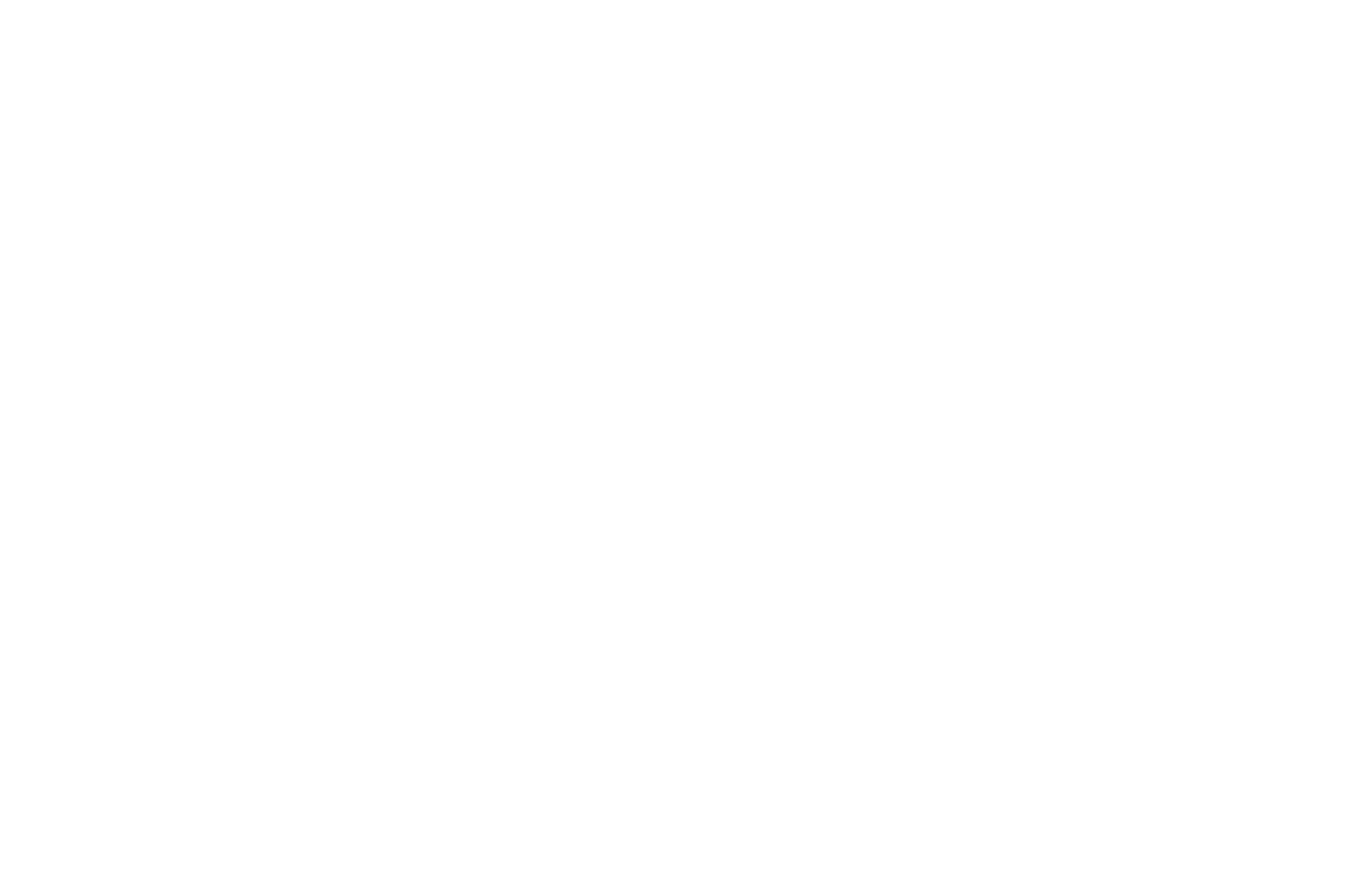 Winner 2018 - Taormina Film Festival - Best Independent Feature-2.png