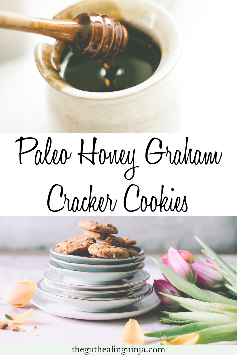 Paleo Honey Graham Cracker Cookies - The Gut Healing Ninja