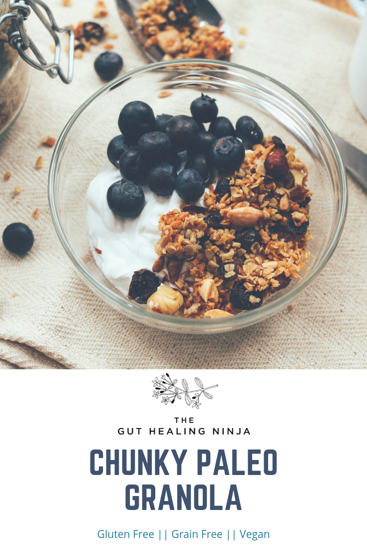 Chunky Paleo Granola | The Gut Healing Ninja