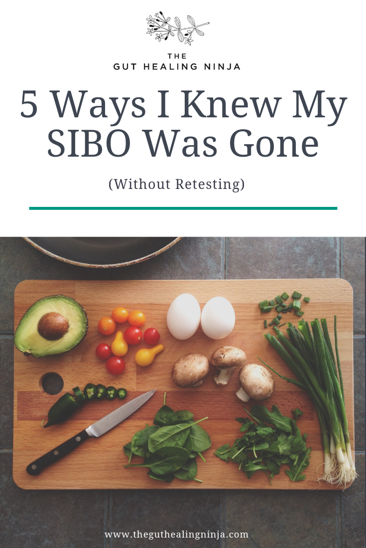 5 Ways I Knew My SIBO Was Gone | The Gut Healing Ninja