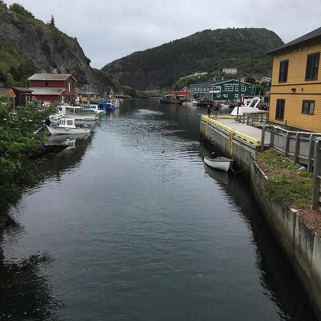 Sailing out from Quidi Vidi #Newfoundland