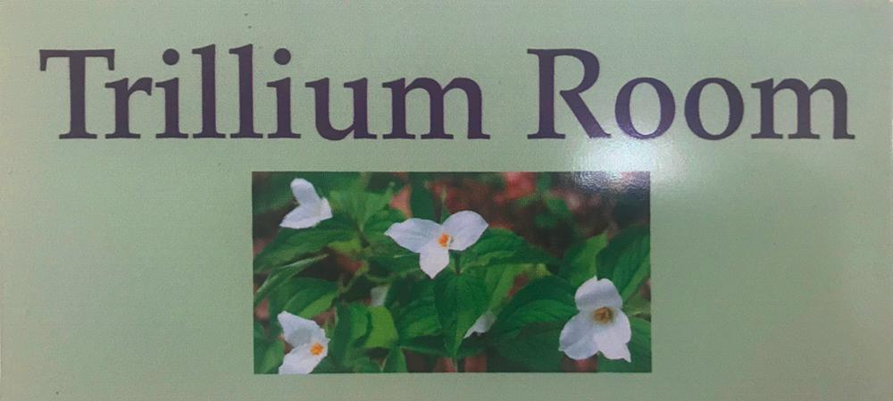 Alma Midwifery Birth Center Trillium Room.png
