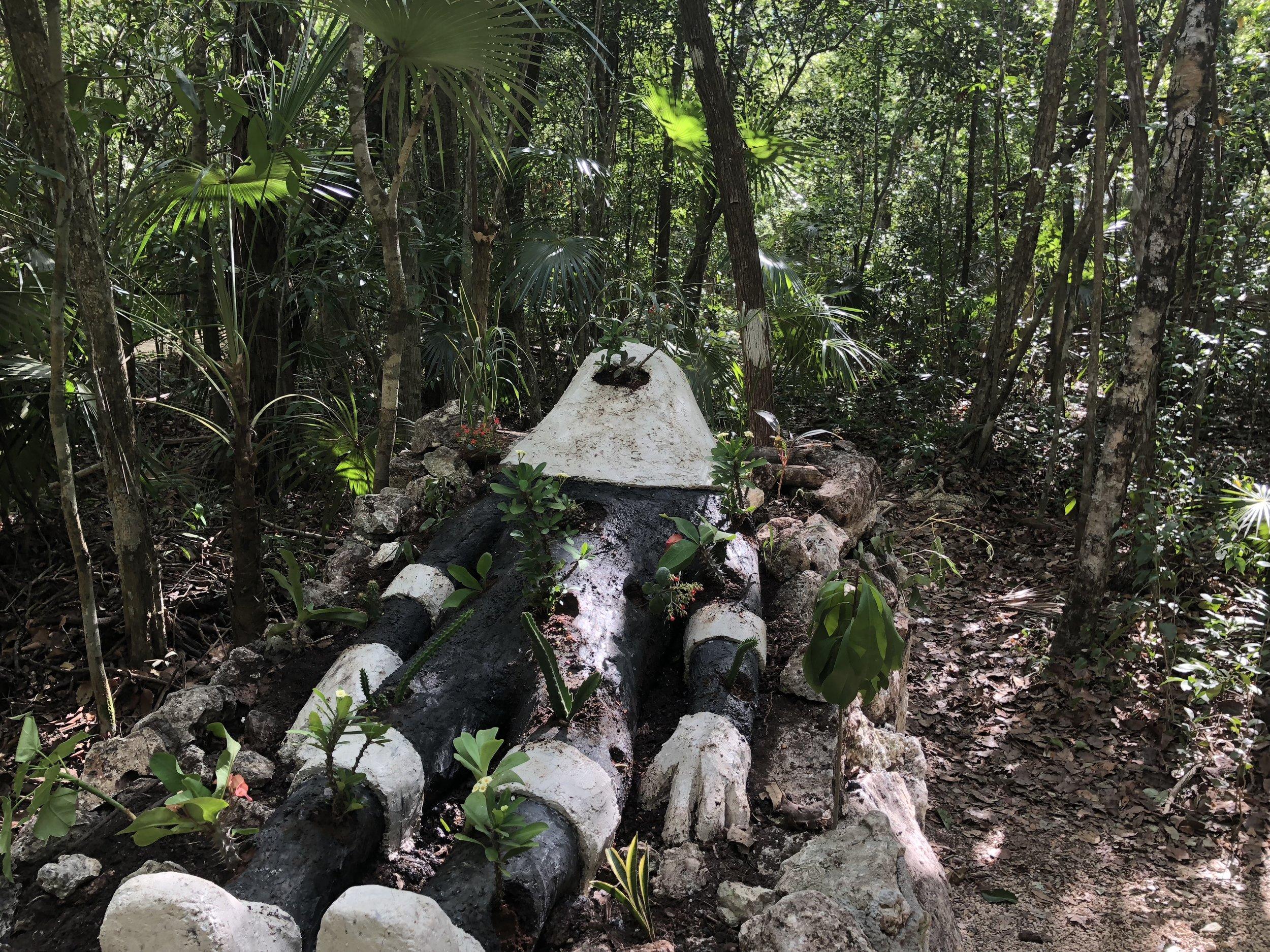 MARTIN FERREYRA - Aluxé installation at the Jungle Art Walk
