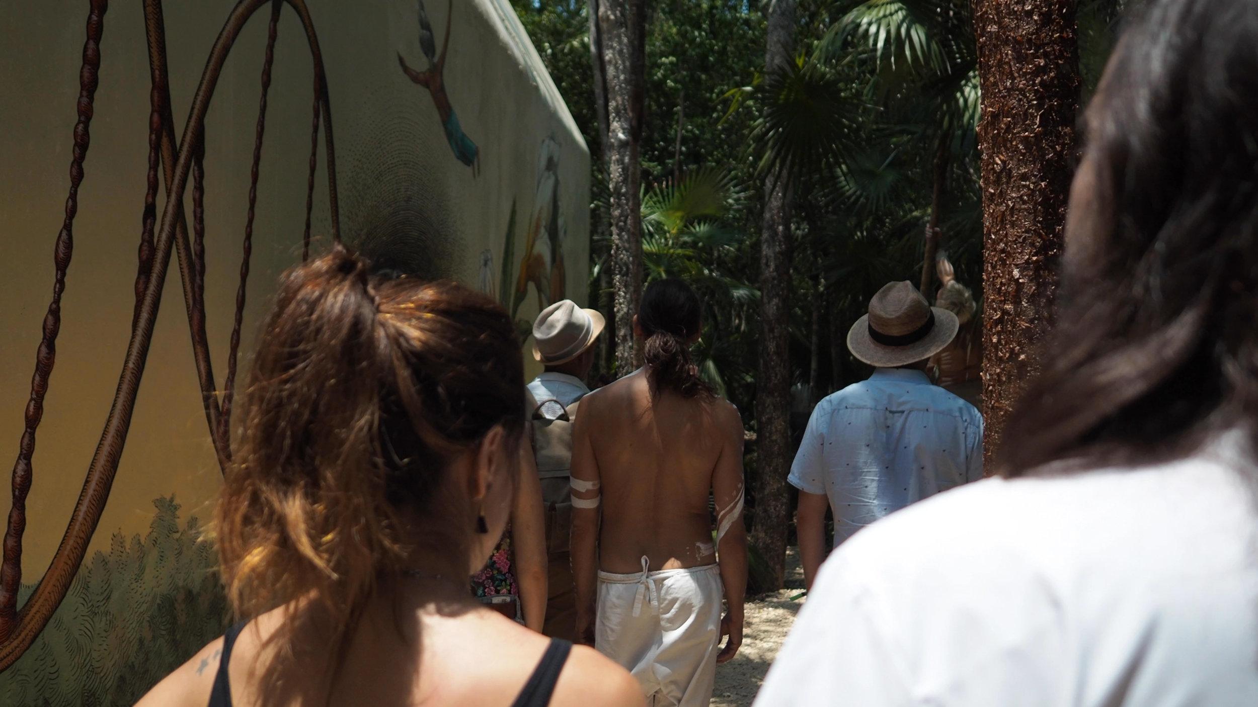 Jungle .jpg