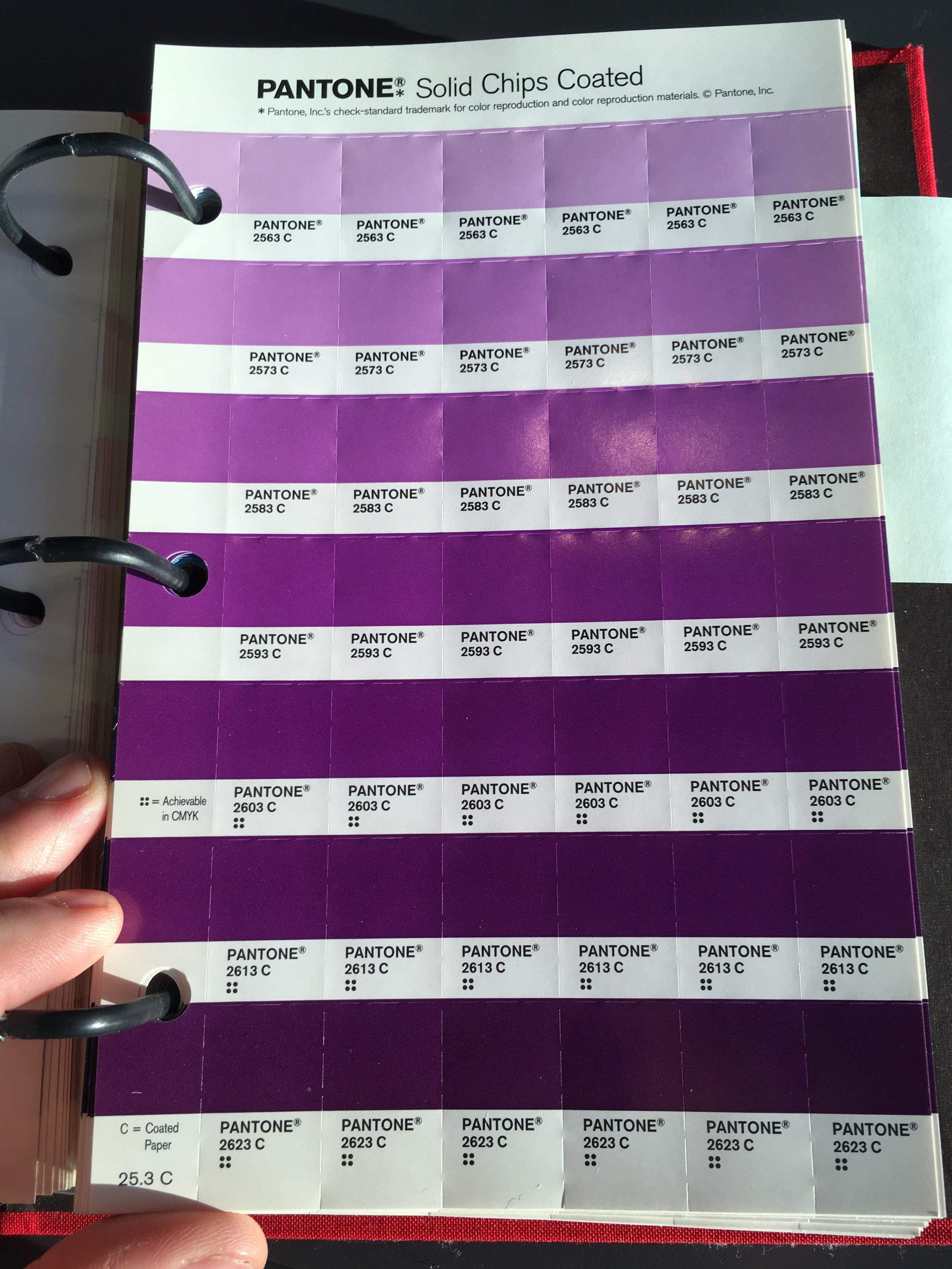 panton purples.JPG