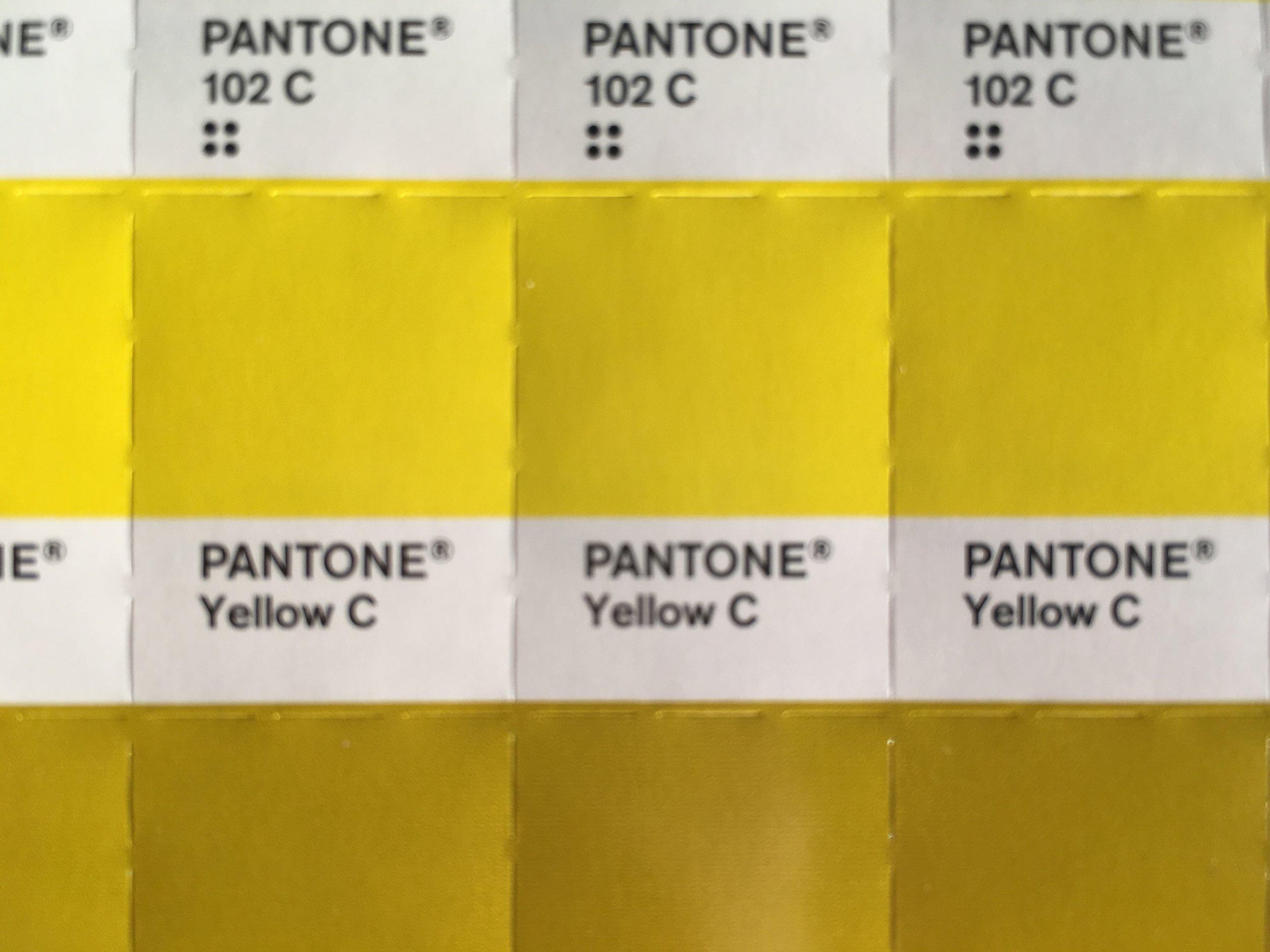 pantone yellow c.JPG