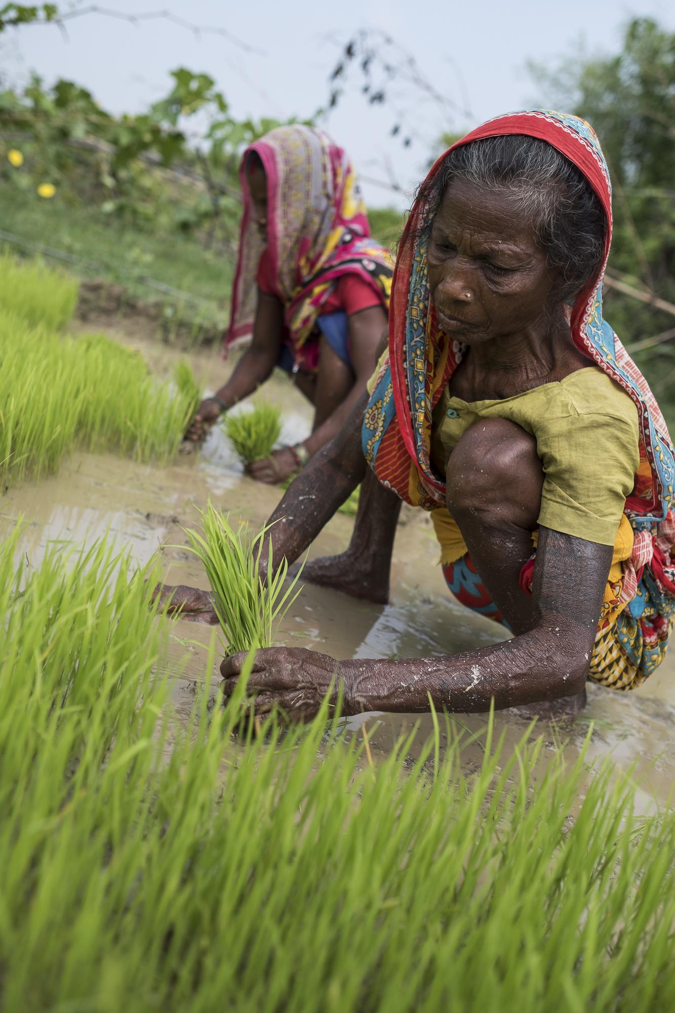 ConorAshleigh-©2017-Nepal-webres-43.jpg