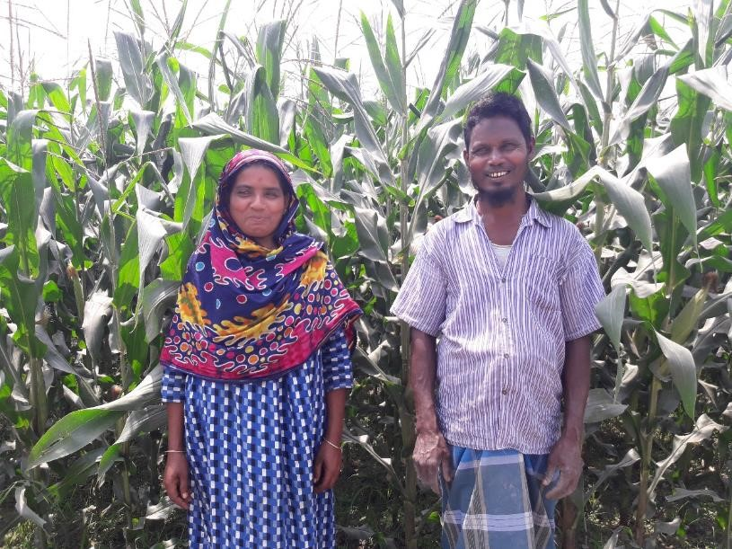 Anzuma Begam and her husband with their maize crop.