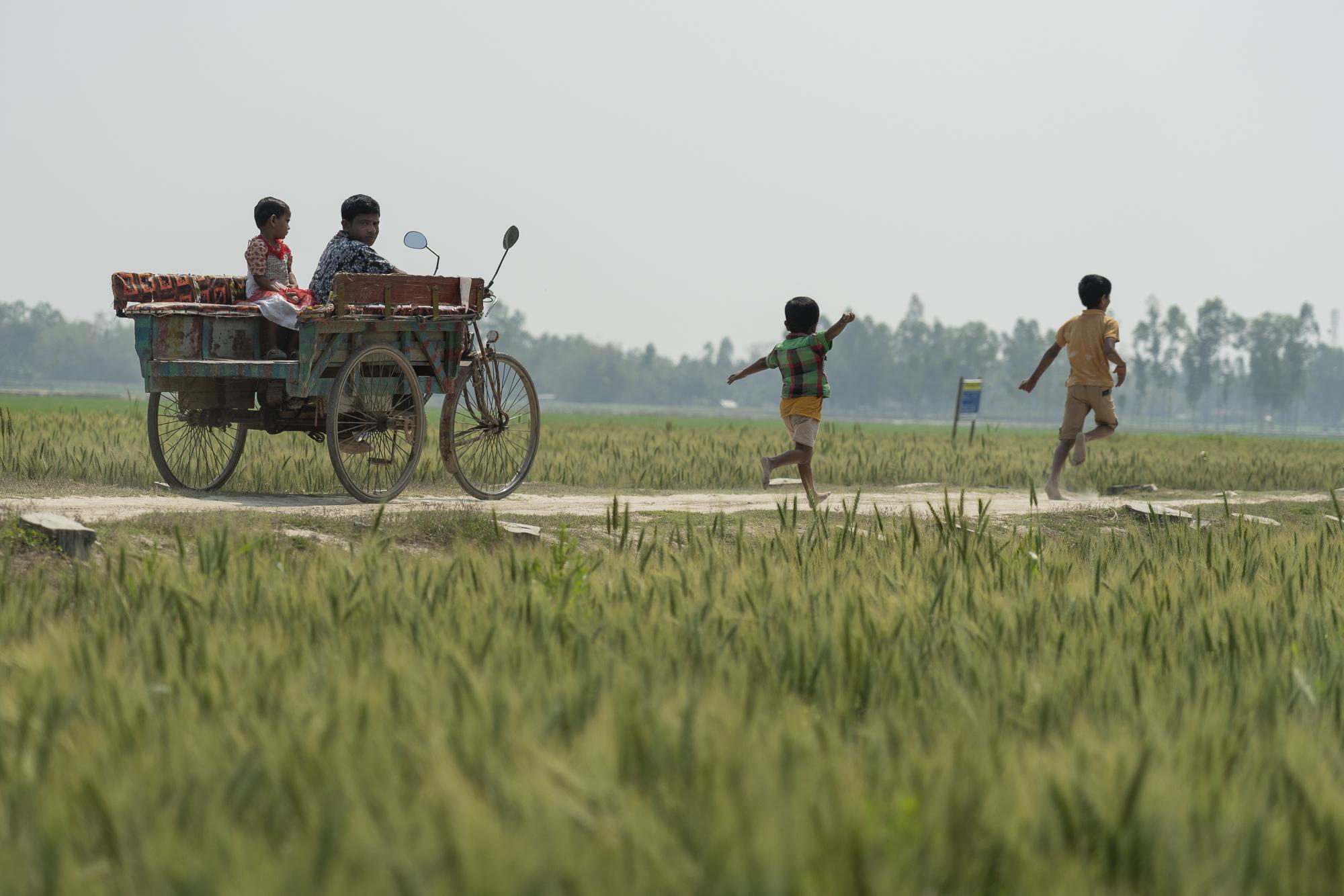 ConorAshleigh-2019-ACIAR-SDIP-Bangladesh-webres-455.jpg