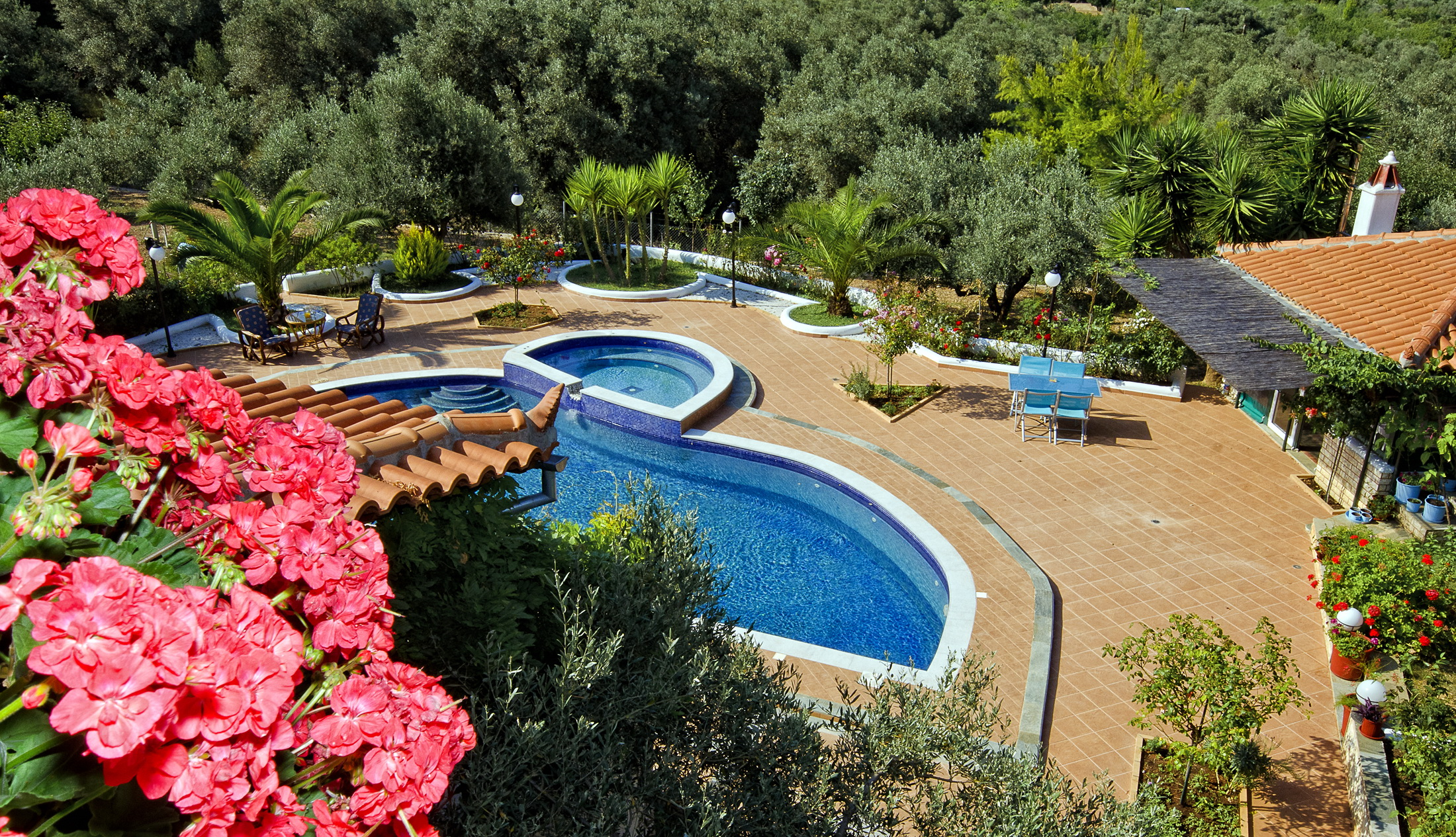 view from above swimming pool.jpg