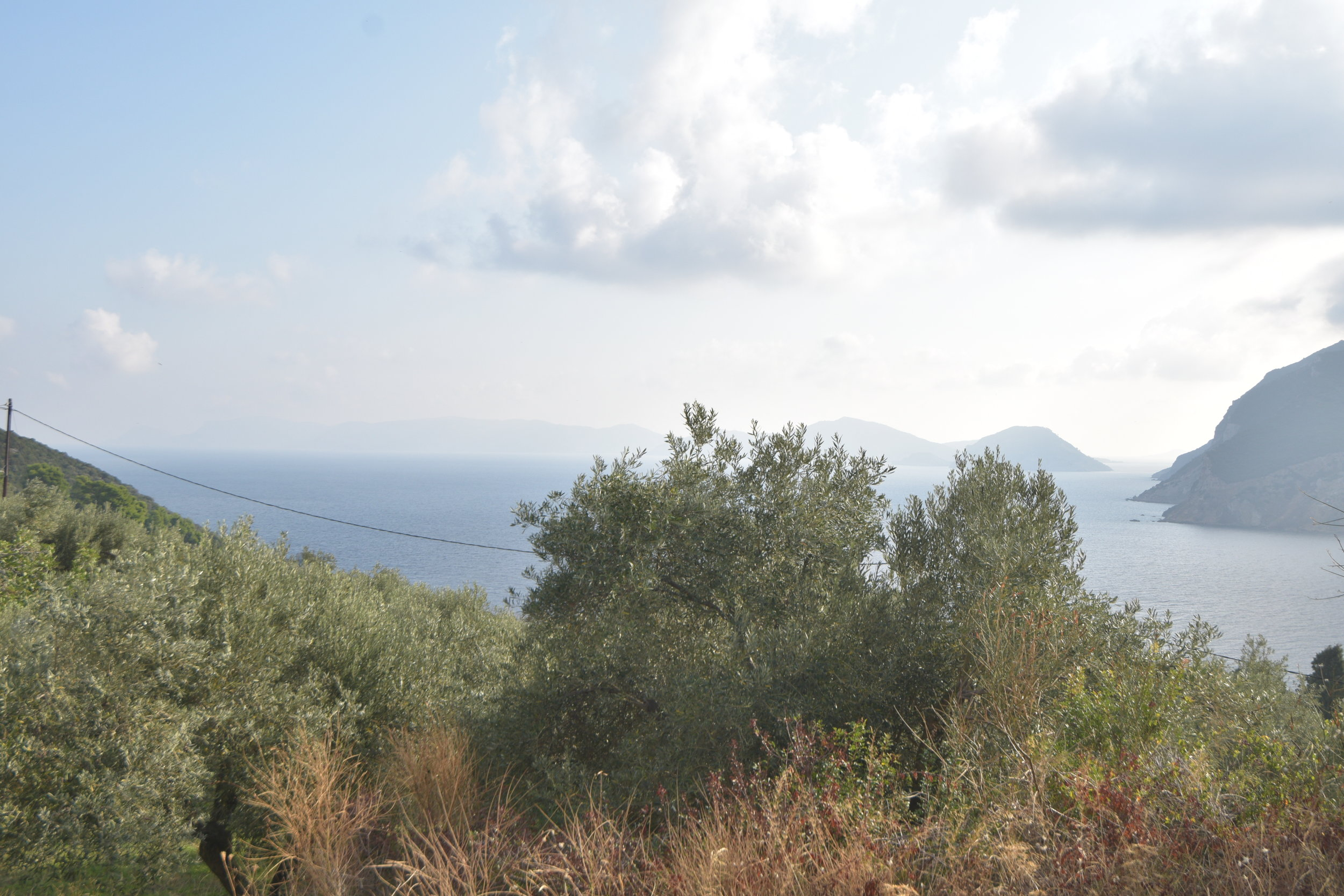 Wonderful romantic piece of land  Property number 303  Price: euro 60.000   Read more