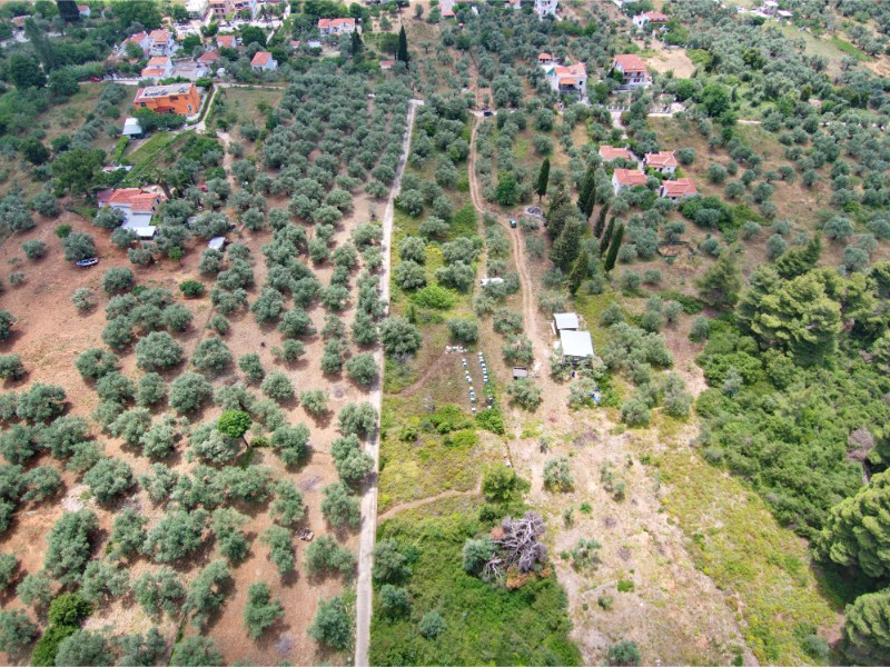 Partly_build_able_ land_in_Stafylos_4.jpg