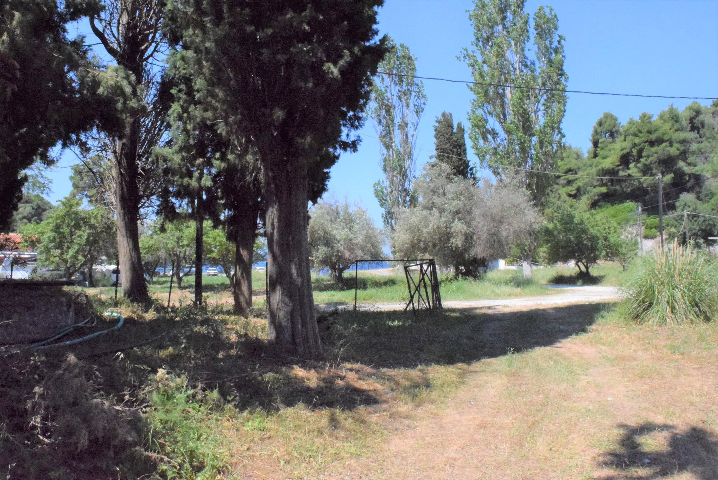 Beautiful land in Agnondas  Property number 314  Price: euro 150.000    Read more