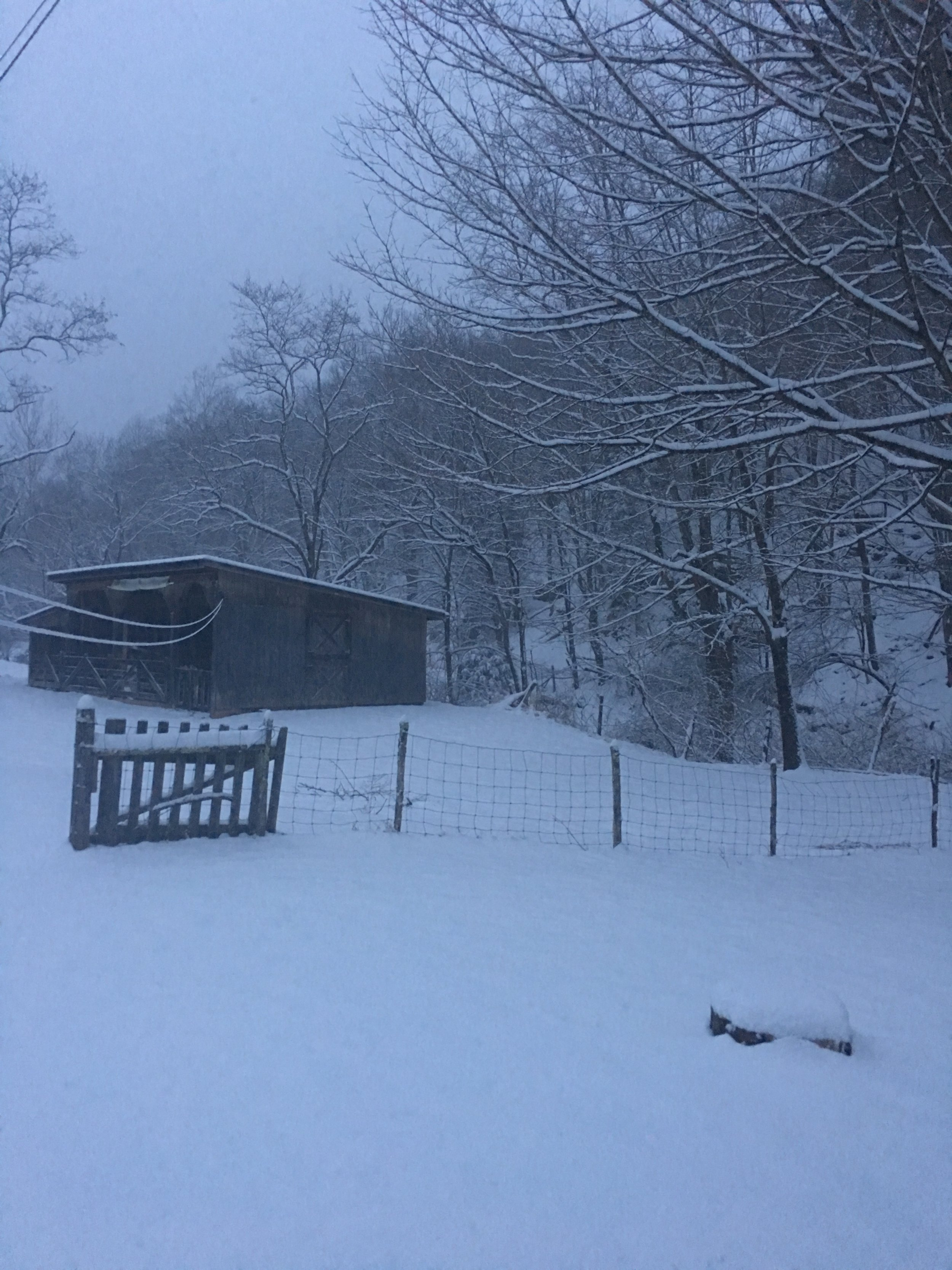 The lambing shed - and the snow has just begun!