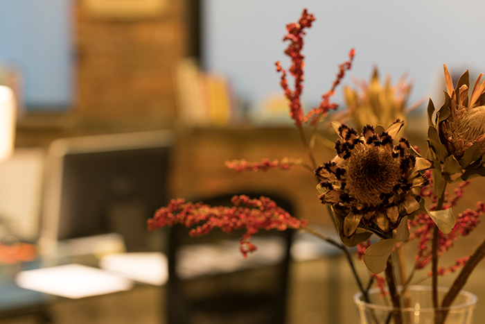 Downtown Psychotherapists in beautiful office Financial District