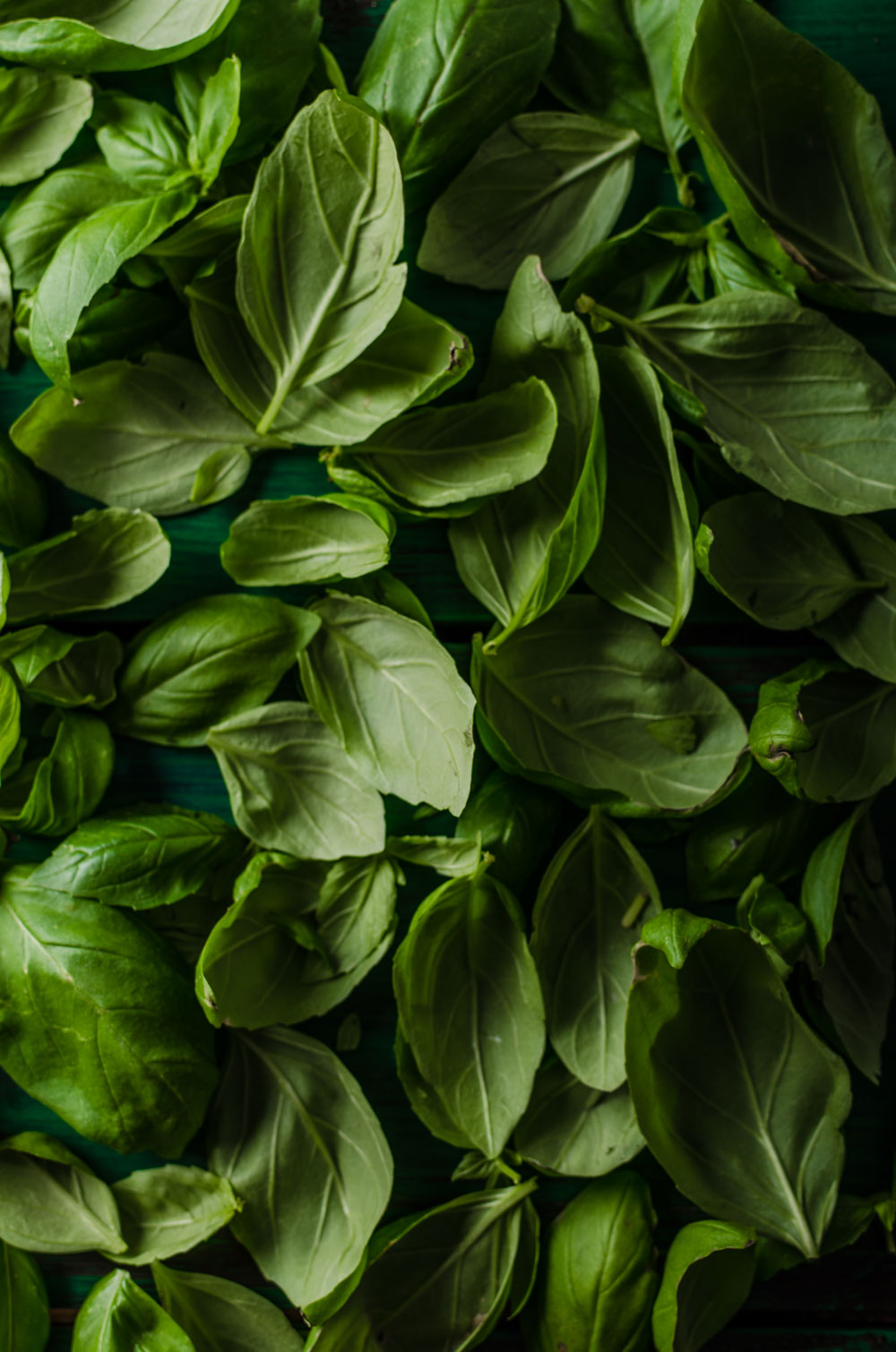 Carefully pruned and cultivated over several weeks, our basil seedlings are constantly monitored to produce a floral, bright basil with notes of clove and anise.