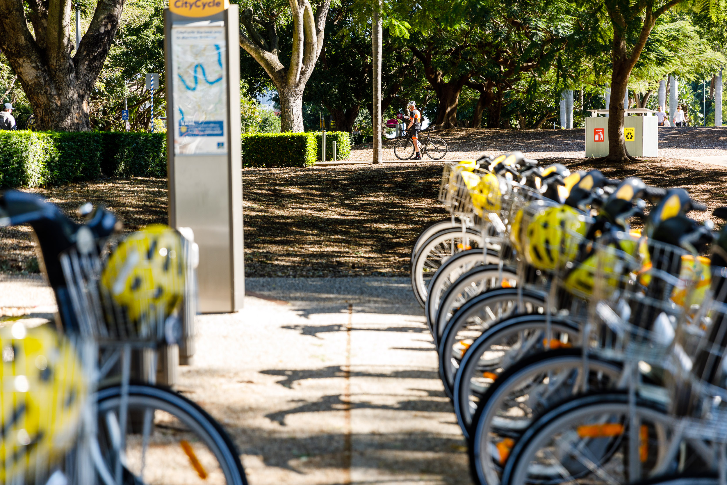City Cycle Bikes (New Farm Park)
