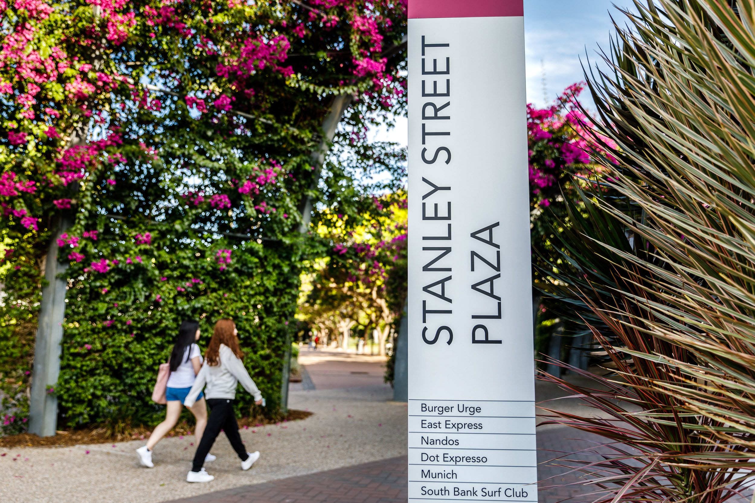 Catch a Ferry to Southbank Parklands (15 Min Walk)