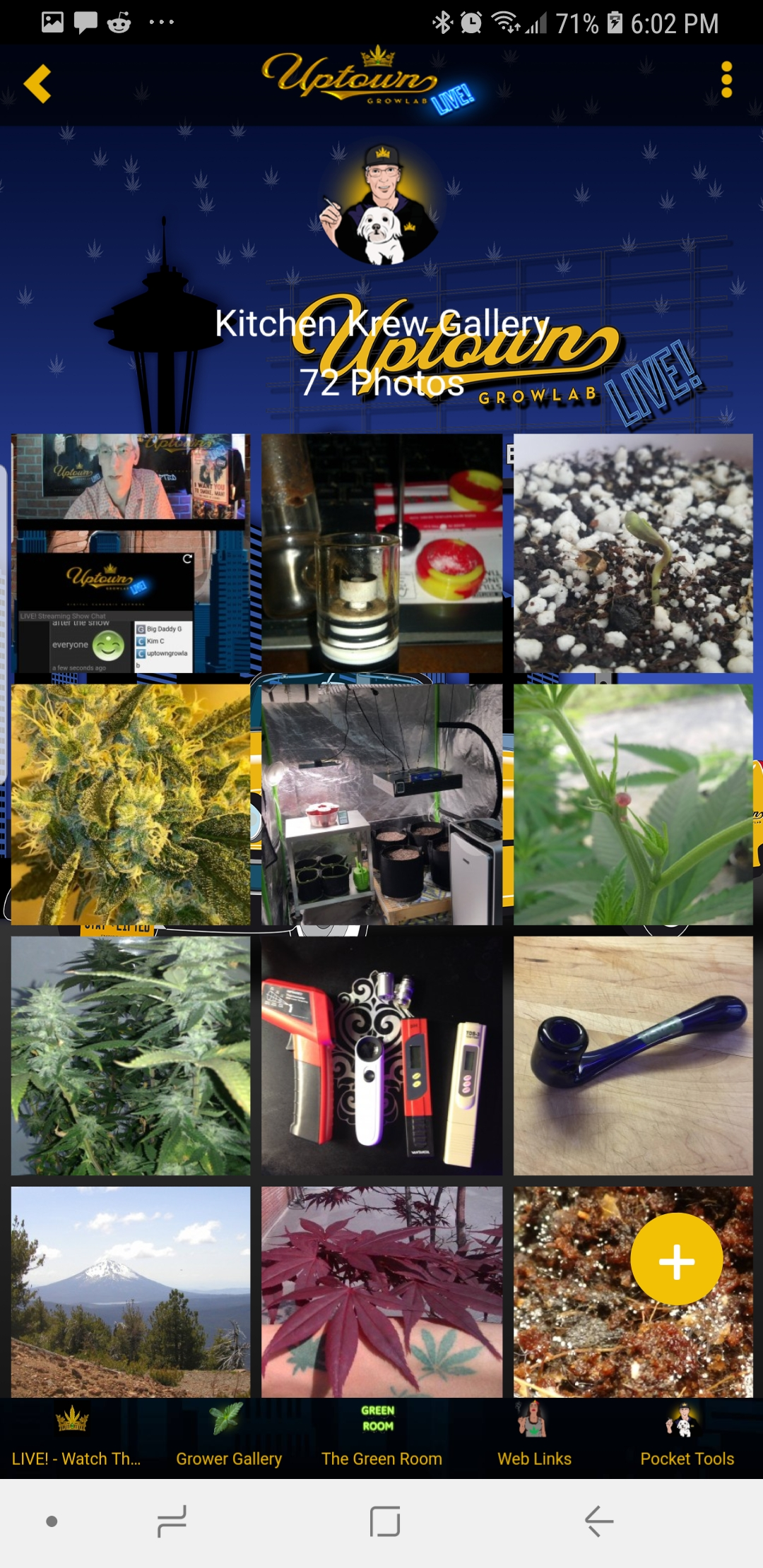 Grower Gallery - Kitchen Krew User submissions