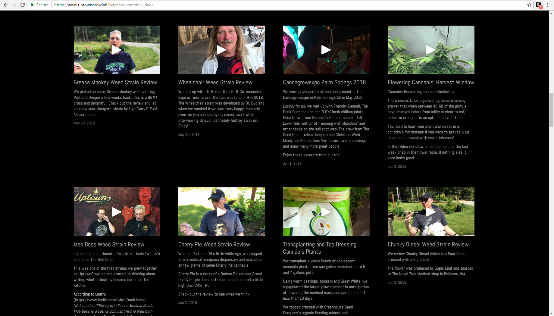 Our exclusive custom-branded video content library