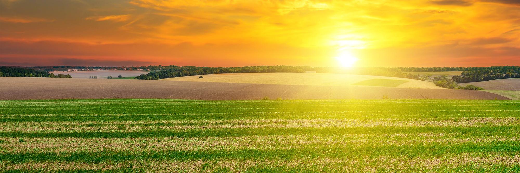 Wisconsin Farm Sunrise