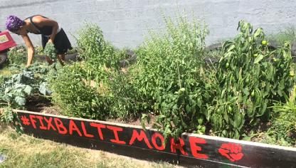 Fix Baltimore : Urban Farming Baltimore, MD