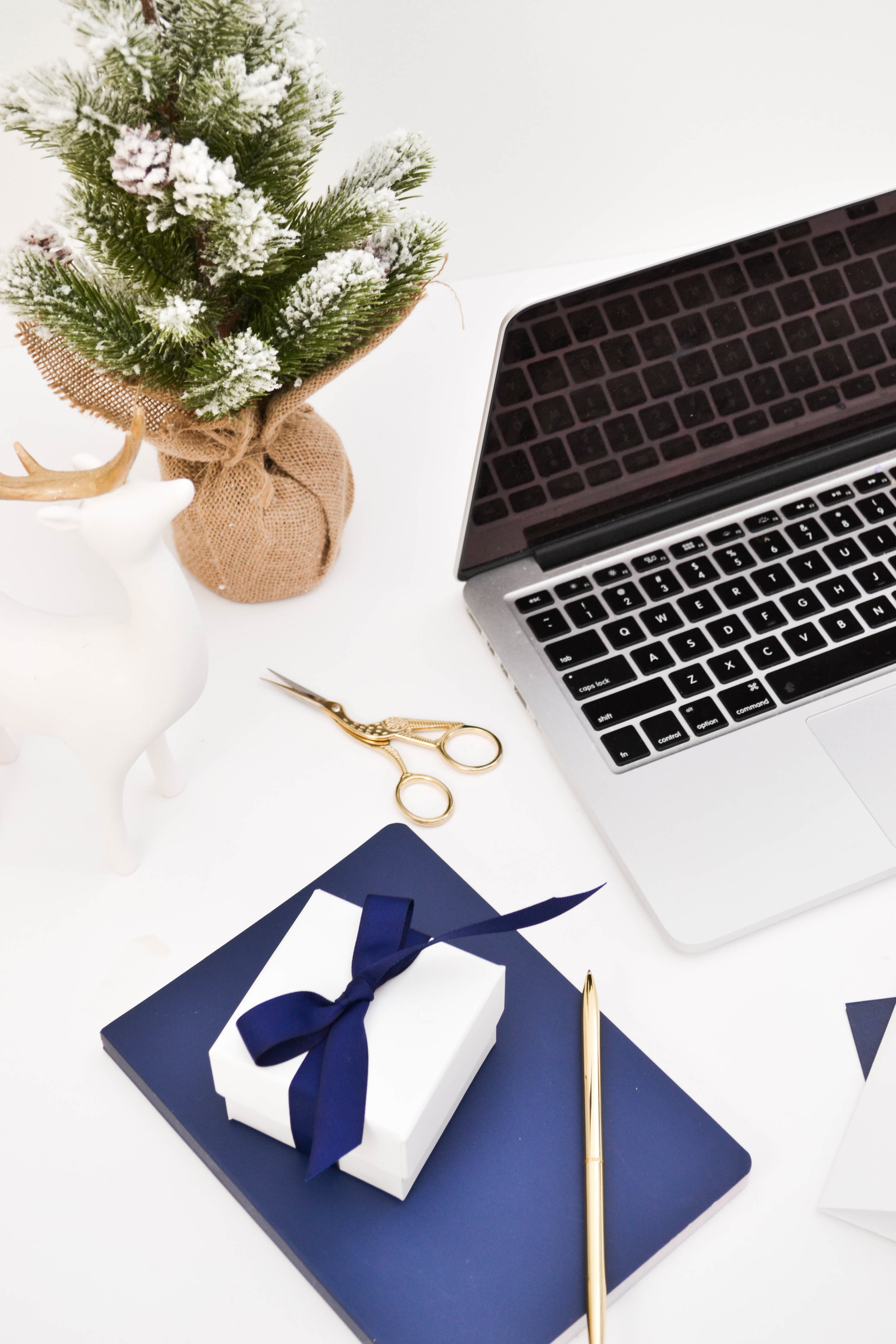 Pixistock is another great stock photography website for female entrepreneurs.