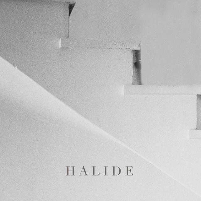 One spot left!! We're hosting @halideworkshop in the studio on January 13 and 14, and would love to see you there! Halide is a photography workshop featuring hands-on learning, film education, creative growth and community building, and is the perfect reset for photographers kicking off 2019. For more details visit the website in @halideworkshop profile or message @elizabethladuca