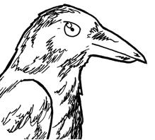 Detective Crow
