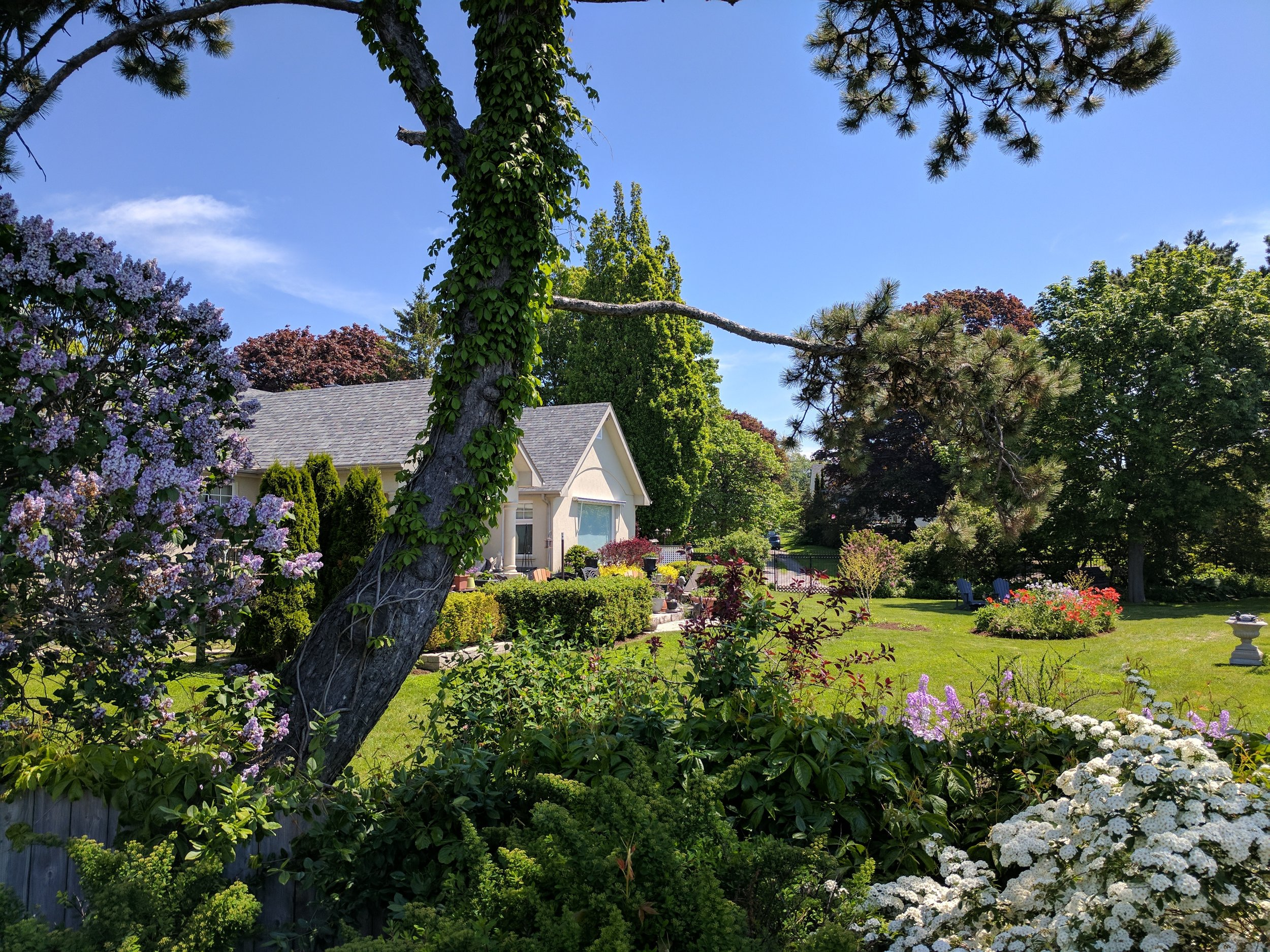 Willowmere - The B& B with a view