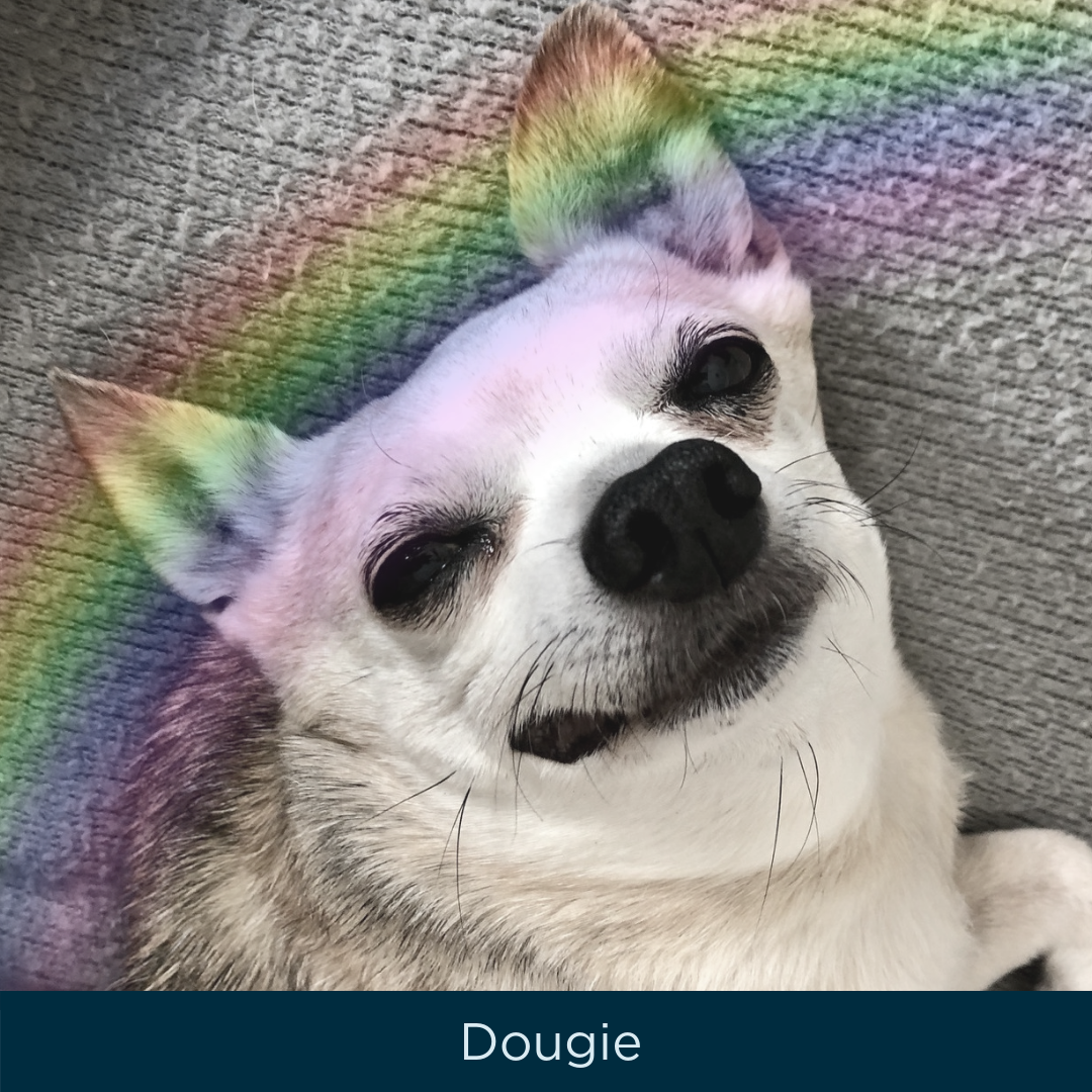 Dougie.png