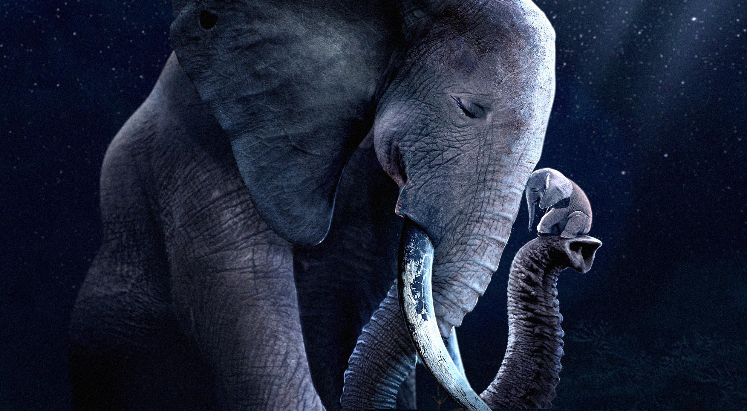 THE TINY ELEPHANT