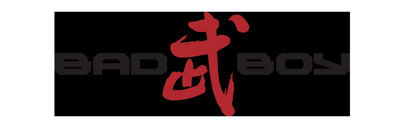 bb-warror-logo.png
