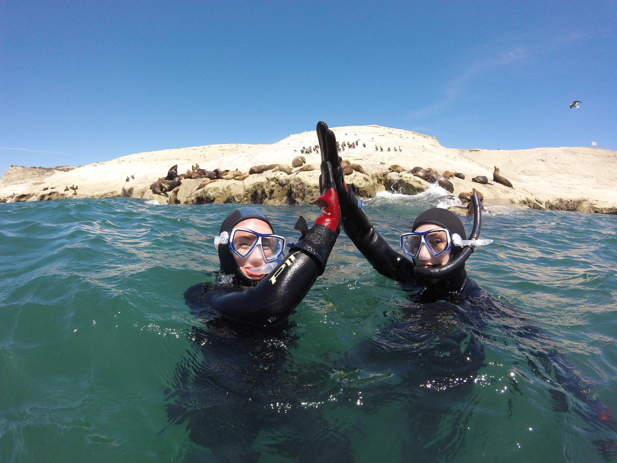 Snorkeling con Lobos Marinos (6).JPG