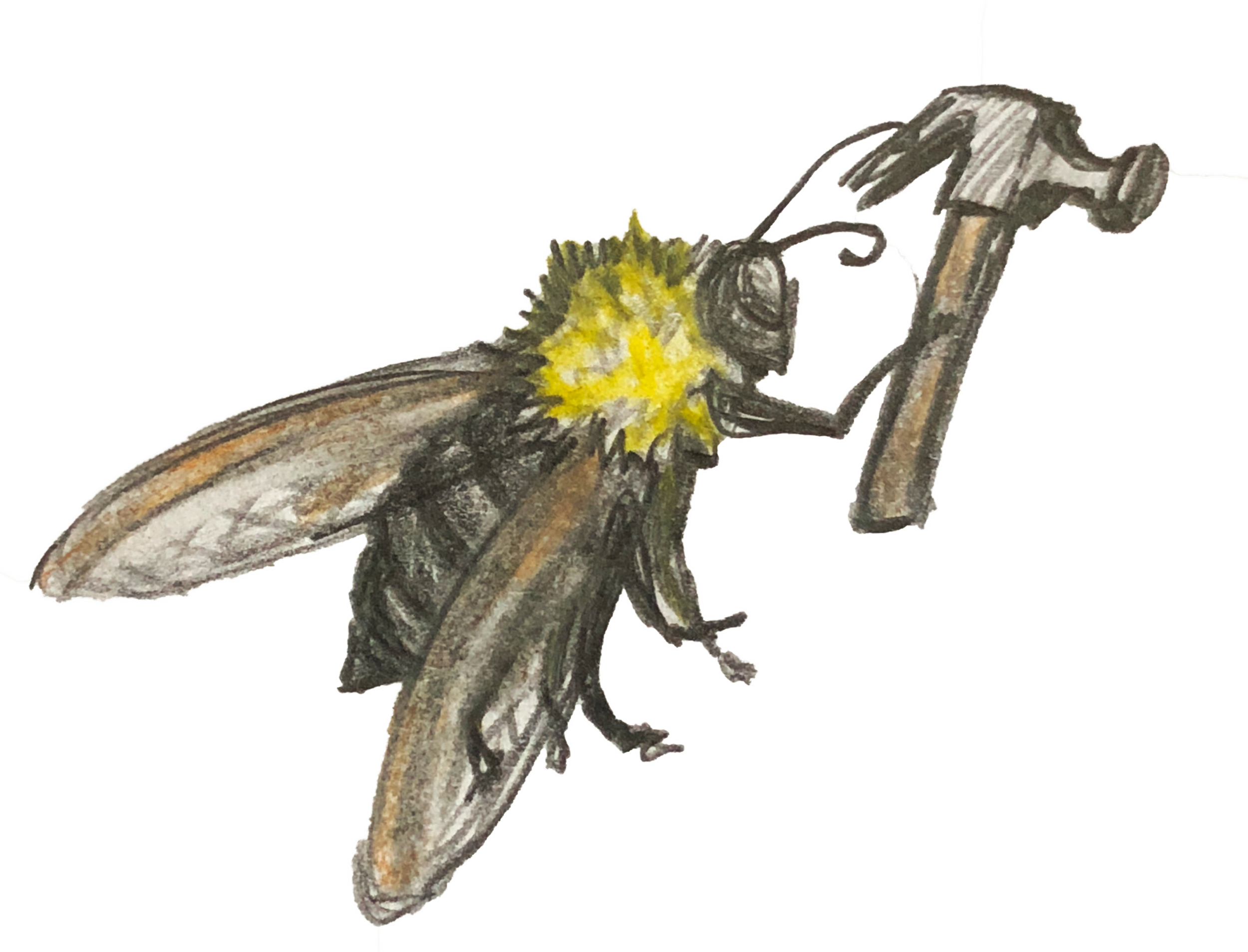 Carpenter Bee (with hammer) .png