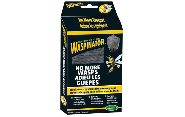 wasps-prevention-1000-1505655361.jpg