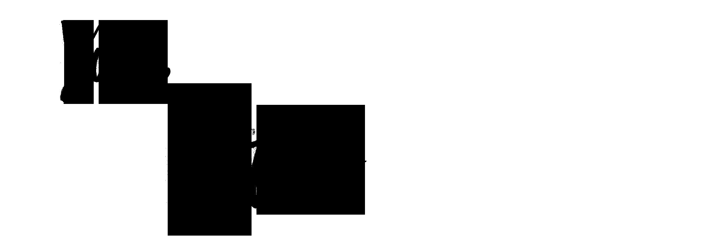 VICTORIA PANTOVIC BLOG SIGNATURE