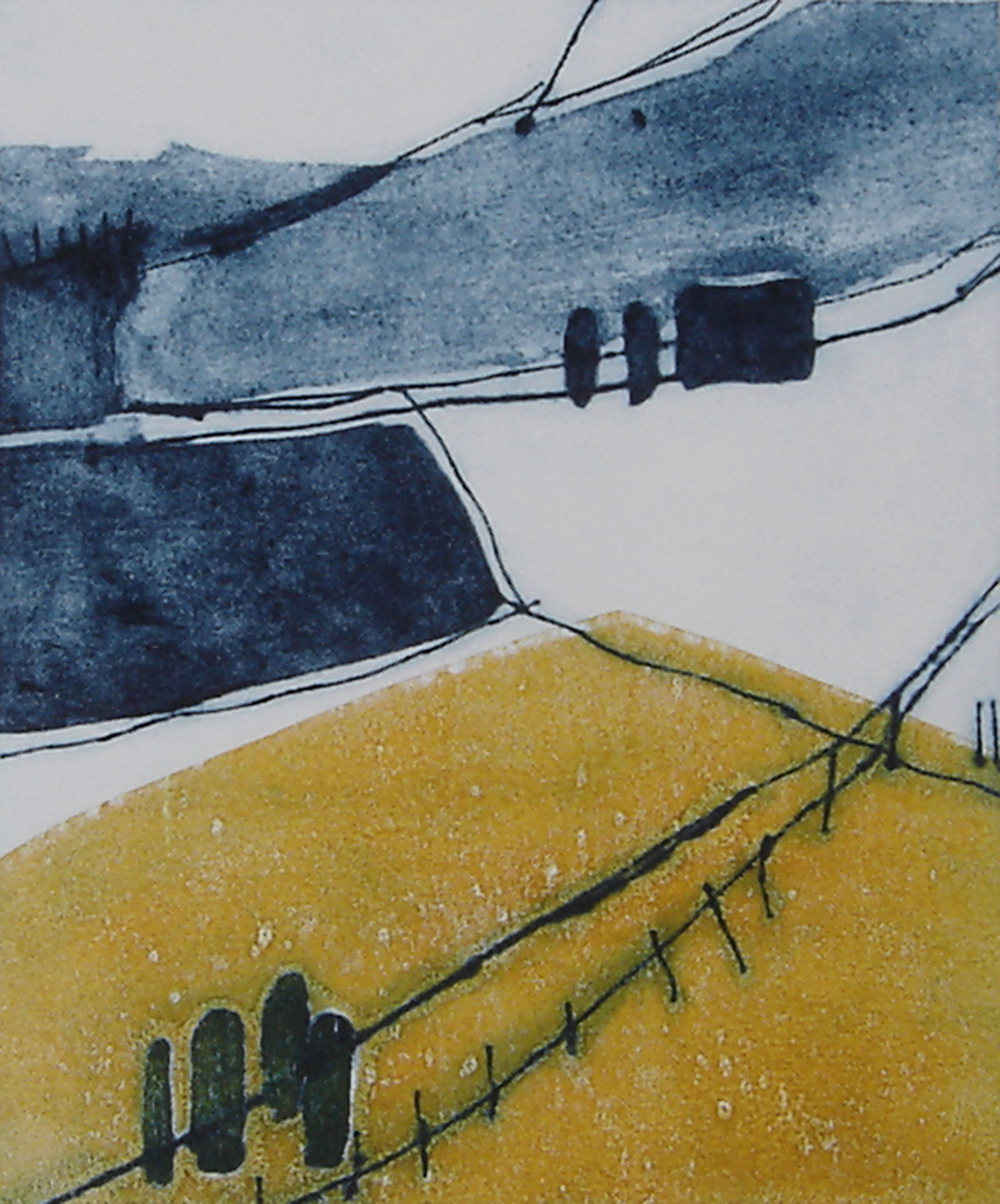 Sean's Fields Carborundum, drypoint and monotype, 28 x 24cm, edition of 3, 2012