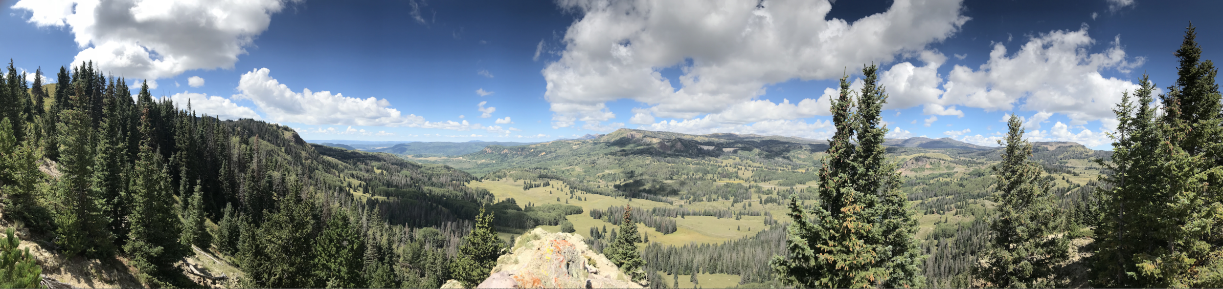 View of New Mexico from the Continental Divide Trail - Cumbres Pass South Photo by Caitlin Barbour