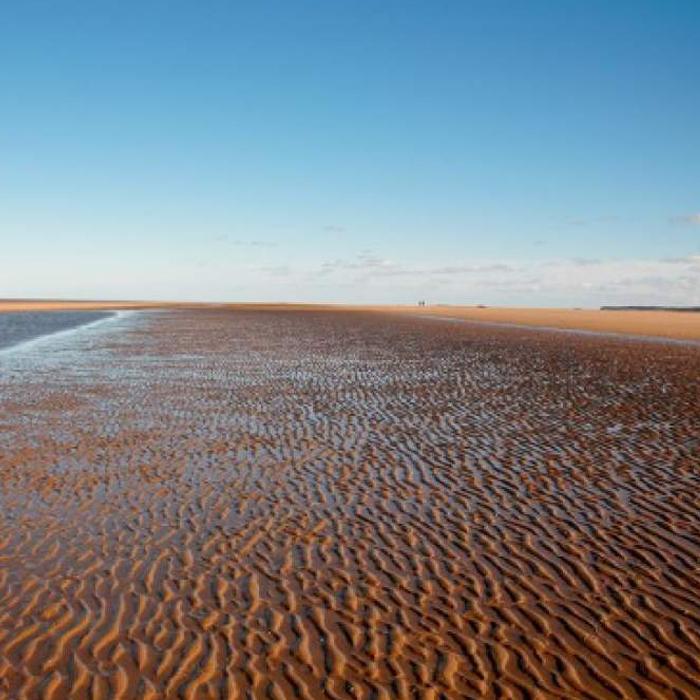 Holme-beach.jpg