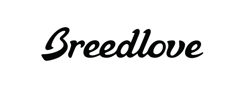 Breedlove-logo-final.jpg