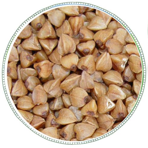 Buckwheat -