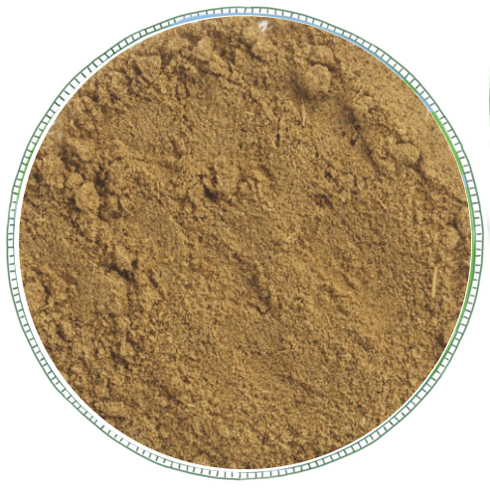 Ground Cumin -