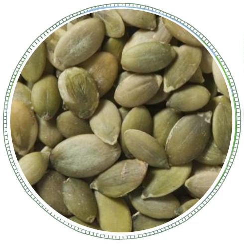 Pumpkin Seeds -