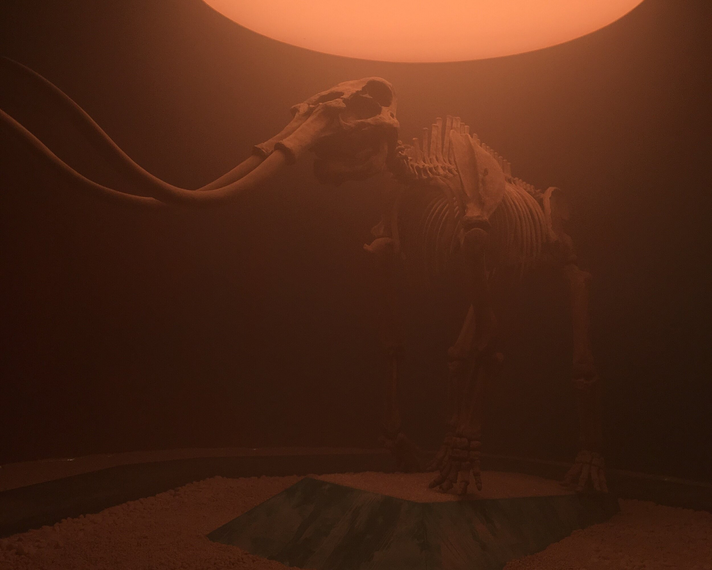 earth story mammouth.jpg