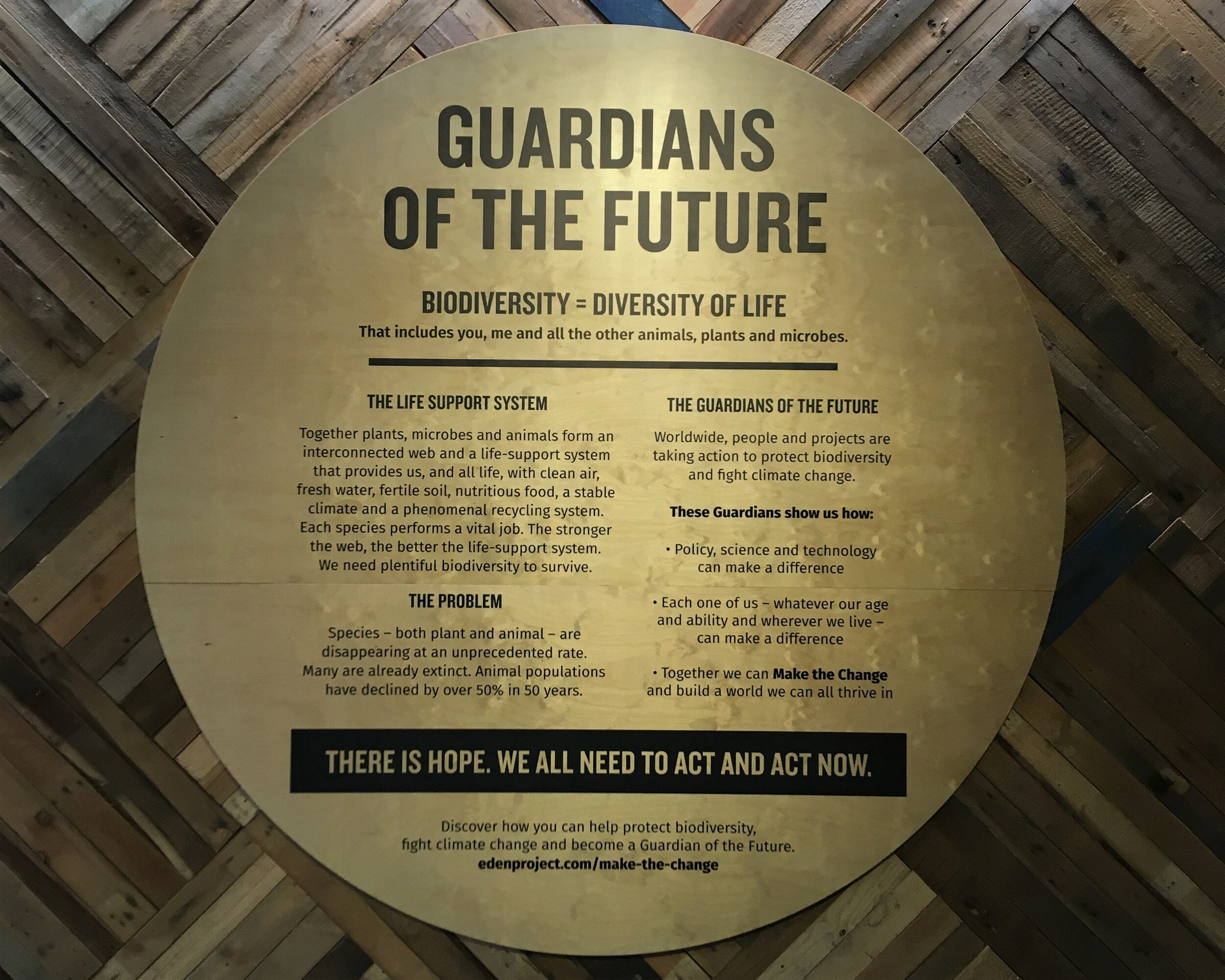 guardians of the future.jpg